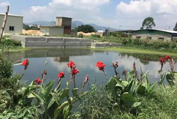 【污水处理工程】长乐市兴鹤农业综合开发有限公司